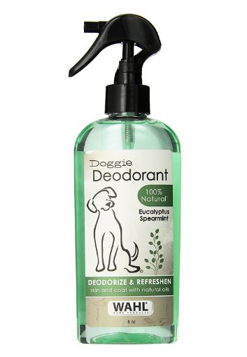 best dog deodorizing spray